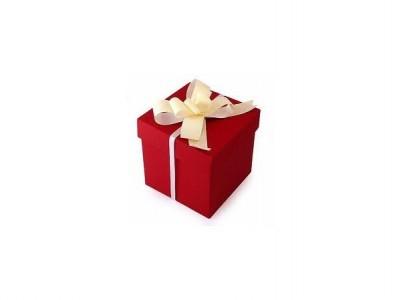 Pristigote įdėjų Kalėdinėms dovanoms? Tuo pasirūpinome mes!