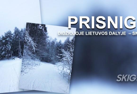 jau šį savaitgalį didžiojoje Lietuvos dalyje galėsime mėgautis lygumų slidėmis!